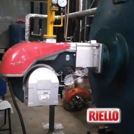 RS68BLU利雅路低氮燃烧器 一吨锅炉低氮燃烧机