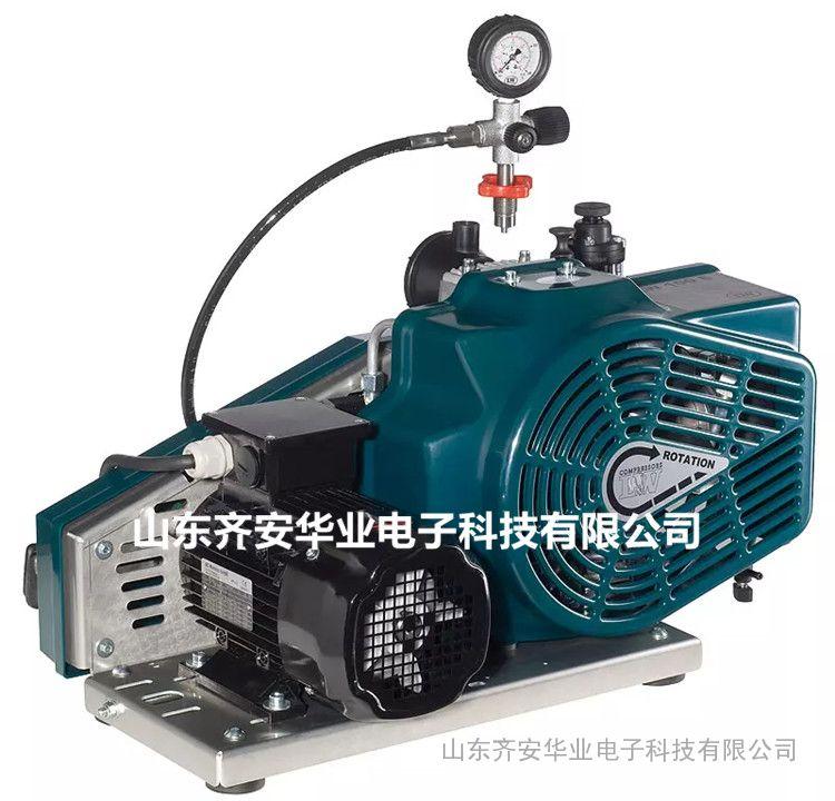 LW100-E-ECO呼吸器空气压缩机、充气泵总代理