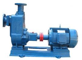 IS65-50-125单级单吸清水(防腐型)管道泵