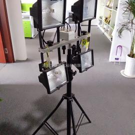 YGSD-2*500W便携式升降工作灯