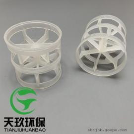 塑料鲍尔环 PP鲍尔环填料 规格齐全25/38/50/76鲍尔环