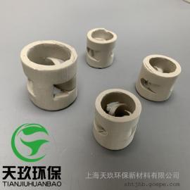 陶瓷鲍尔环、瓷质鲍尔环,陶瓷鲍尔环填料