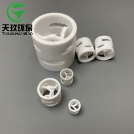 聚四氟乙烯鲍尔环 PTFE塑料鲍尔环 鲍尔环填料