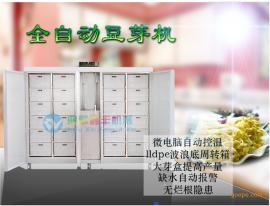 家用豆芽机原理 全自动豆芽机控制器 鑫丰大型豆芽机