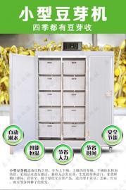 全不锈钢豆芽机 全自动豆芽机设备 鑫丰小型豆芽机厂家