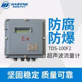 海峰 防爆型超声波流量计选型 TDS-100F2