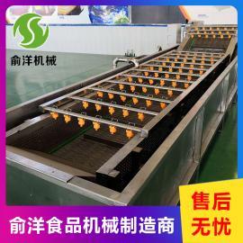 俞洋 蔬菜清洗机 多功能果蔬气泡清洗机 YY-3000