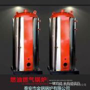 智能燃气蒸汽锅炉 全自动节能 金锅 立式
