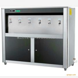 松�嘀胰� 医院专用全自动节能开水器学校工厂车间饮水机温热式直饮机 ZQ-6H