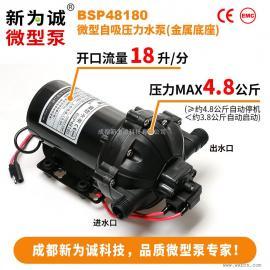 �h�l��⑺�泵BSP48180