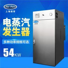 新�� 功率54千瓦,蒸汽量77kg/h�蒸汽�l生器免�k�C��t LDR0.077-0.7