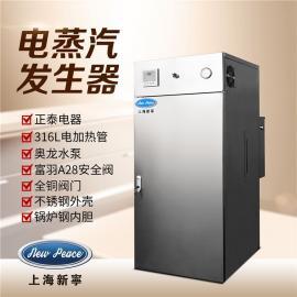 新宁 学校开水用72KW电蒸汽发生器 全自动电蒸汽锅炉 LDR0.1-0.7