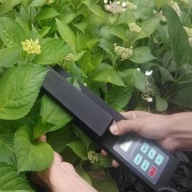 农业活体叶面积仪/叶面积、叶长、叶宽 LAM-A 泛胜