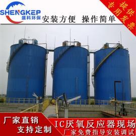 盛科环保厌氧反应器厌氧设备高浓度污水处理IC