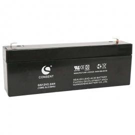 光盛蓄电池 CONSENT铅酸免维护型备用电源 型号齐全