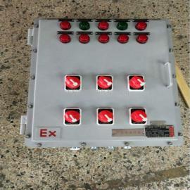 BZC53-A2D2K1G��地�h程控制防爆操作柱