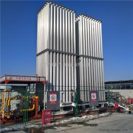 汽化器 lng空温式气化器防爆汽化器气化调压计量撬水浴式电复热器 LNG