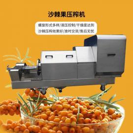 XHYZ-10T/H 鑫华轻工机械 沙棘果压榨机 不锈钢双螺旋榨汁设备