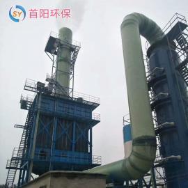 首阳环保炼钢厂20吨生物质锅炉脱硫除尘器参数脱硫脱硝方式方法SY-126