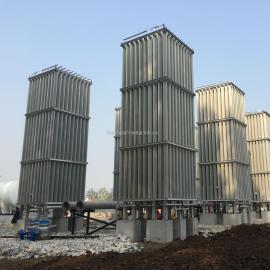汽化器 低温液体气化器LNG汽化器空温式汽化器LNG调压撬减压撬 客户定制