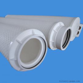瑞恩富大流量折叠滤芯 RFP050-40NPX-L