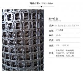 金�� 塑料平�W土工格�� TGGS06