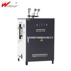 威孚小型立式电蒸汽锅炉LDR