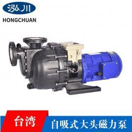 GYW-40022VB自吸大头泵,耐酸碱磁力泵