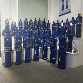 盖伦 大棚喷灌-小型潜水泵 QY8.4-40-2.2