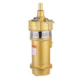 VOITH祥�� �X�泵IPVP.6-125101