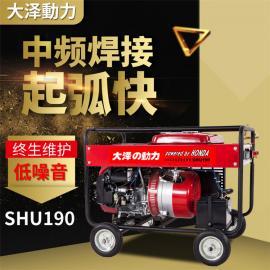 大泽动力300A移动焊汽油发电电焊机规格TOTO300A