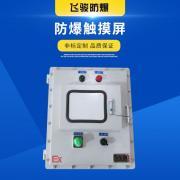 飞骏定制 防爆控制箱触摸屏 钢板焊接配电箱 按钮开关控制箱防爆控制箱