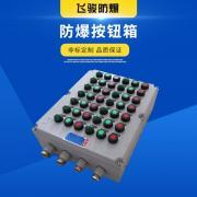 飞骏 防爆操作按钮箱 防爆控制箱 防爆操作柱 控制配电箱