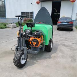 圣隆牵引式农用喷雾器DY-300
