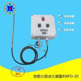 宝威燃控高炉煤气点火高能点火器,长明灯放散点火装置BWFD-20