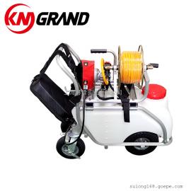 48V 手推式式高压消毒喷雾打药机 果园农用大棚喷雾机 KM GRAND