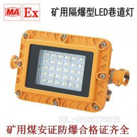 金�王DGS36/45/48/50/127L系列�V用隔爆型LED巷道��DGS36/127L(A)