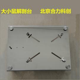 大小鼠两用解剖台 蛙鼠解剖板 不锈钢HL/JPT-2.2