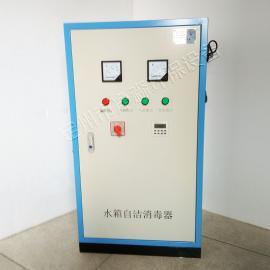 净淼碳钢喷塑材质外置式小浓度微电解水箱自洁消毒器臭氧杀菌器SCII-5HB