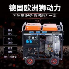 欧洲狮300移动发电电焊机技术参数BT-300TSI