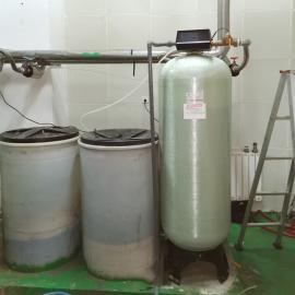 FLECK2850SM 软化水处理设备