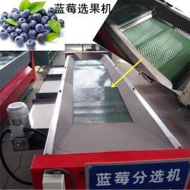 凯祥LMXGJ-22蓝莓选果机,蓝莓分级机