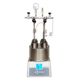 森朗仪器(Sen Long)平行反应器SLPD450