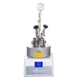 森朗仪器(Sen Long)微型反应釜SLM1000
