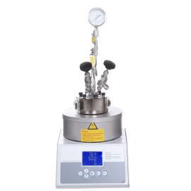 森朗仪器(Sen Long)微型高压反应釜SLM500