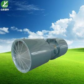 源丰环保变频隧道通风风机SDS