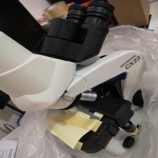 其它有图有实物显微镜现货CX23