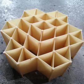 �P迪RPP六角�壤猸h塑料版�p瓷填料DN220*100