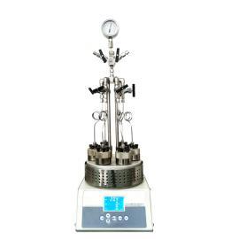 SLPD6100高通量平行反��器
