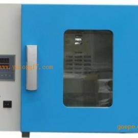 DHG-9123A台式电热恒温鼓风干燥箱250度